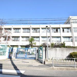 堺市立市小学校(周辺)
