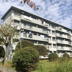 浅香山住宅13棟