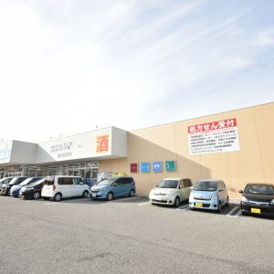 ウエルシア大阪狭山池之原店(1000m)徒歩13分(周辺)