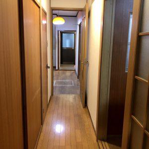 1階廊下(内装)